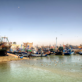Mogador by Tariq Ouhti - Transportation Boats ( colour, port, hdr, essaouira, d90, colorfull, nikon )