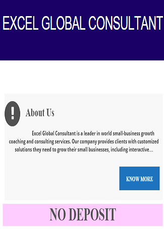 Excel Global Consultant
