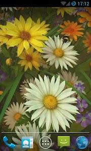 Bee Live Wallpaper HD v1.0