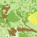 Soil Survey Map icon