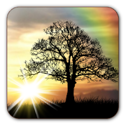 App Sun Rise Free Live Wallpaper APK for Windows Phone