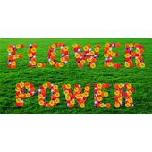 Flower Power Sticker