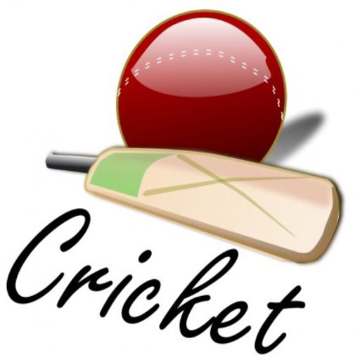 Cricket Live Score LOGO-APP點子