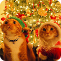 Cat Christmas Live Wallpaper icon