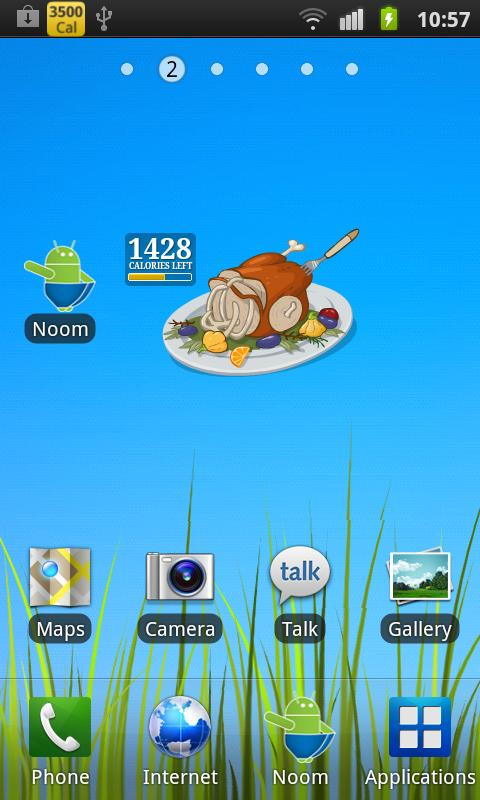 Burn the Turkey - Widget - screenshot