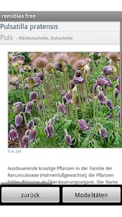 remidias free Homeopathy Rep- screenshot thumbnail