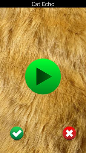 고양이 사운드 벨소리