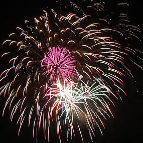 Mutli-burst by Michelle Nolan - Abstract Fire & Fireworks ( abstract, colorful, color, fireworks, night, july, 4th,  )