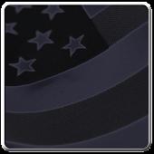 US Citizenship Questionnaire