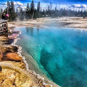 Yellowstone by Roxana McRoberts - Landscapes Forests