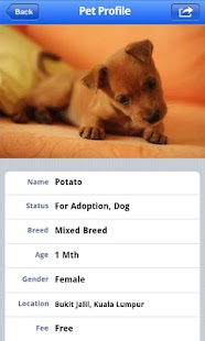 PetFinder.my- screenshot thumbnail