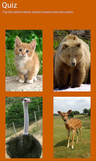 動物園數碼玩具