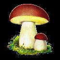 Atlas grzybów icon