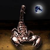 Scorpion Night - Hunting game