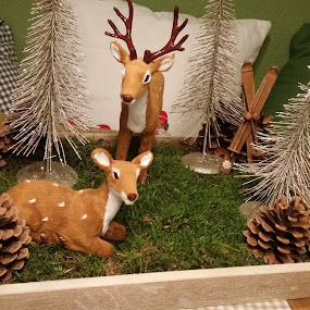 Christmas Kitchen Decorations by Joe Harris - Public Holidays Christmas ( holiday, pinecone, moss, hunting, christmas, decorations, deer )
