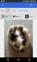 Screenshot of Pixelot: Pixelate, Blur Photos