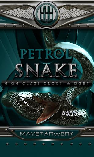 petrol snake clock widget