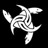 Rogue Sharks