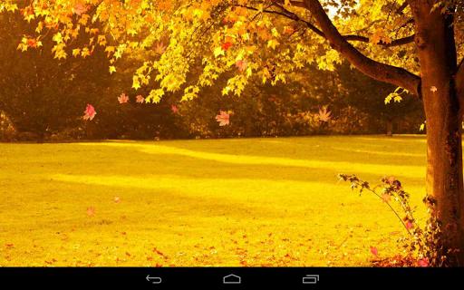 Autumn Wallpaper screenshots 18