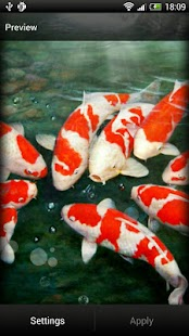 Koi Fish Live Wallpaper Free - screenshot thumbnail