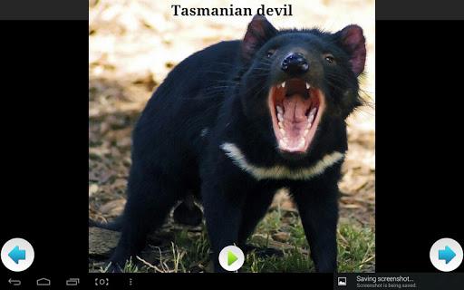 無料音乐Appのオーストラリアの動物の音|HotApp4Game