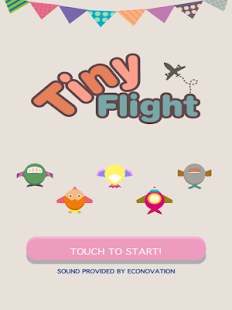 Tiny Flight