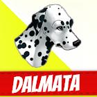 Dalmatian Dogs icon