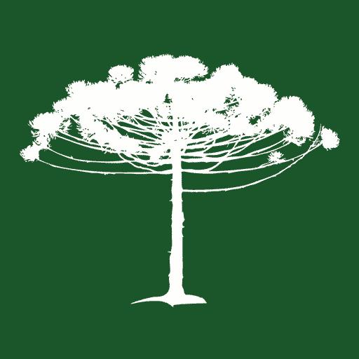 MonteVerde 旅遊 App LOGO-APP試玩