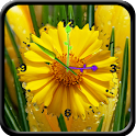 Flower Clock 1 icon