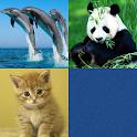 宝宝趣味识图对对碰与记忆训练-动物篇 icon
