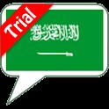 SVOX Arabic/العربي Malik Trial logo