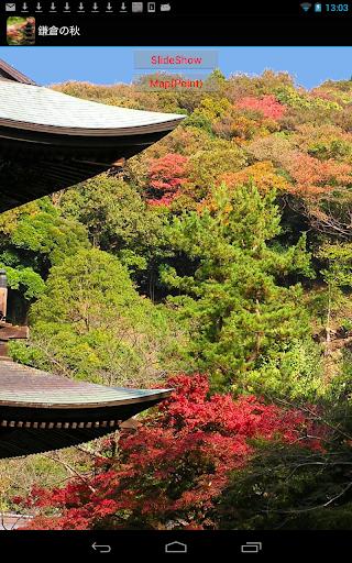 鎌倉の紅葉 JP055