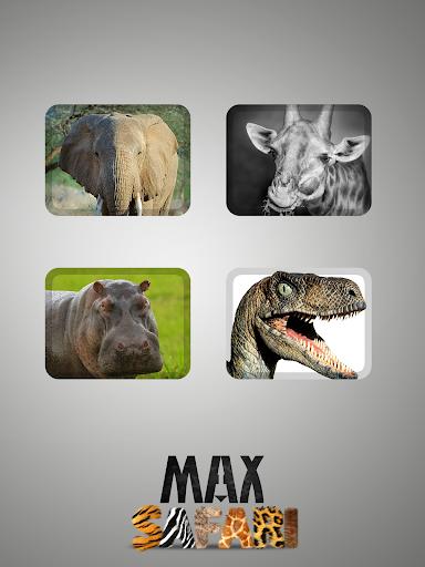 Max Safari