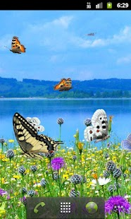 Alphaism Butterfly Wallpaper