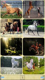 玩免費娛樂APP|下載馬背景 app不用錢|硬是要APP