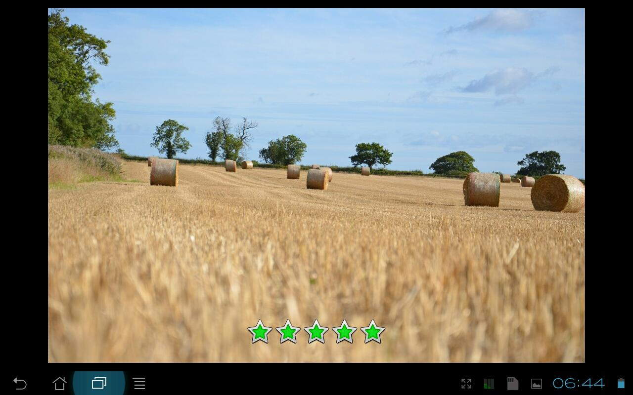 Android Photo Review Lite - screenshot