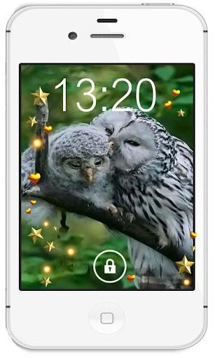 Owls Love HD live wallpaper