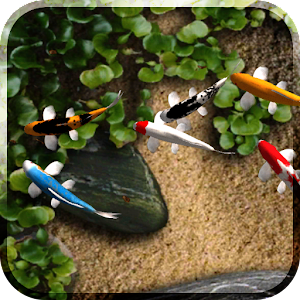 Koi live wallpaper android apps on google play for Koi pond app