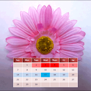 App My Menstrual Diary APK for Windows Phone