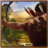 Wild Animals Hunting:Archer