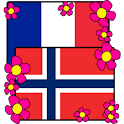 Norwegian-French Dictionary logo