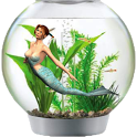 Mermaid Aquarium icon
