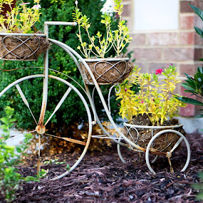 flower bike yard ornament by Christopher Wu - Artistic Objects Other Objects (  )