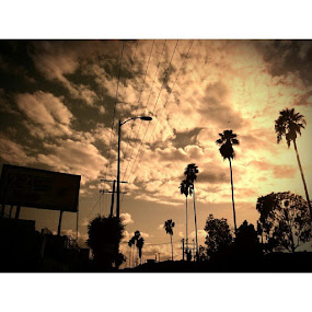 The sun is still shining and tomorrow will bring another day.. learn to see the cup half full and things will get better :] by Unknown - Landscapes Cloud Formations ( losangeles, skyline, palmtrees, heightslife )