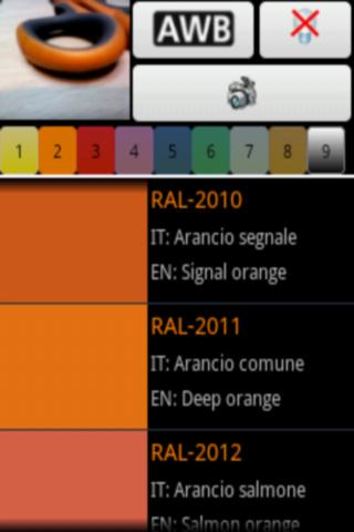 Color detector for RAL- screenshot