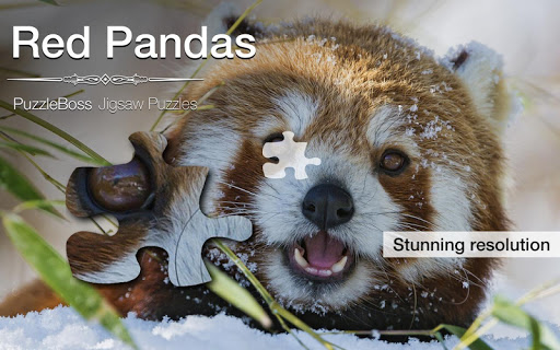 Red Panda Jigsaw Puzzles