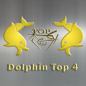 Dolphin Top4