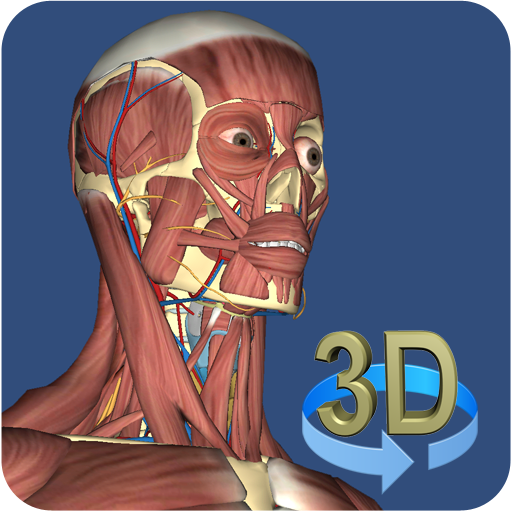 3d Anatomy Apps On Google Play Free Android App Market