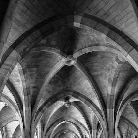Glasgow University Cloisters by Shona McQuilken - Buildings & Architecture Architectural Detail ( university, black and white, arches, glasgow, pillars, cloisters, vertical lines, pwc )