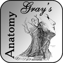 Gray's Anatomy 2012 Lite icon
